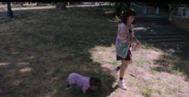 Il colpo del cane: il trailer ufficiale