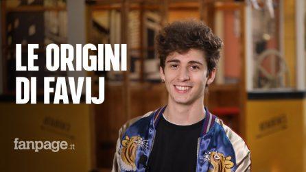 Favij从起源到成功