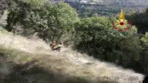 Coppia di escursionisti va a caccia di funghi e si perde nei boschi: salvati dai pompieri