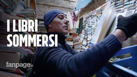 """Acqua alta a Venezia, volontari aiutano la libreria devastata dalla piena: """"Donate un libro"""""""