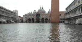 Venezia, suonano le sirene per l'acqua alta: scenario surreale a Piazza San Marco