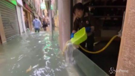 Acqua alta a Venezia, le scene incredibili in città