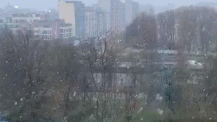Nevicata a Milano: con la tempesta di Santa Lucia arrivano il gelo e i primi fiocchi di neve