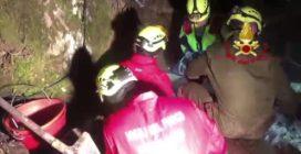 小时解救两只困住消防员的狗救了他的命