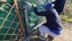 San Basilio, recinzioni in ferro e bracieri per distruggere la droga: sequestrati