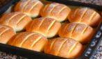 Panini soffici al formaggio: la ricetta per averli davvero gustosi