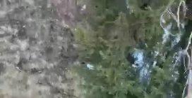Il salvataggio dei due bimbi bloccati nel canalone a Courmayeur