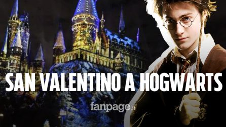 San valentino 2020 con harry potter la cena nel castello for Grassello di calce quanto costa