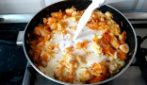 Chicken with onion and carrot: a complete meal rich of taste