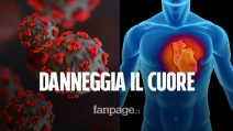Il coronavirus potrebbe danneggiare il cuore in modo permanente, anche nelle persone sane