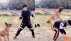 Le incredibili acrobazie di questo cane con il suo addestratore