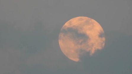 Le splendide immagini della Superluna Rosa vista dall'Italia
