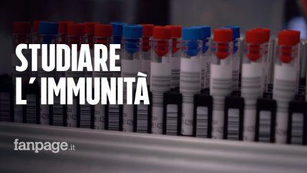 """Coronavirus, Università di Padova: """"Stiamo studiando l'immunità per capire quanto dura nei pazienti"""""""