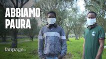 """Nella tendopoli di migranti a Gioia Tauro: """"Viviamo in 15 in una baracca senza cibo né acqua, aiuto"""""""