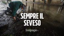 """Milano, ancora una volta il Seveso: """"Sono sessant'anni che va così"""""""