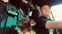 """""""Chiede aiuto"""" a due agenti in strada: lo adottano come cane della polizia"""