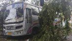 Ciclone Amphan devasta intera città indiana di Calcutta: 12 morti