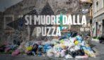 """Catania, strade piene di rifiuti, il Comune non raccoglie più l'indifferenziata: """"Uno schifo"""""""