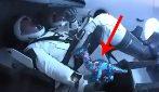 Space X, peluche in giro per la cabina durante il lancio: quello che in pochi hanno notato