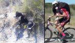 Ciclista salva un cane abbandonato: lo carica sulle spalle e pedala per chilometri