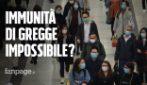 Immunità di gregge forse impossibile: parte dei positivi al coronavirus perde anticorpi in settimane