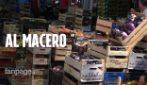 Palermo, troppe restrizioni per il Covid e la frutta e la verdura finiscono al macero