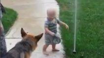 Il bambino che insegna al cane a non avere paura dell'irrigatore