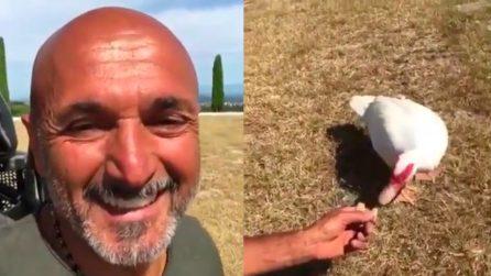 """""""Piano, Biancaneve!"""", Luciano Spalletti e la vita da campagna con la sua papera"""