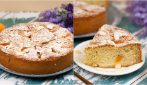 Fluffy apricot cake: a delicious cake to try!