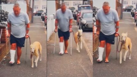 Fa visitare il suo cane zoppicante dal veterinario: scopre che lo stava solo imitando
