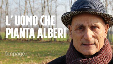 Treviso, Imprenditore compra 500mila metri quadri per piantare alberi