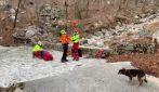 Trieste, ferito sopravvive 7 notti all'addiaccio sui monti, vegliato dal suo cane
