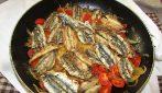 Alici fritte con pomodorini: la ricetta del secondo piatto che conquisterà tutti