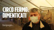 """Il mondo del circo in ginocchio causa Covid, Flavio Togni: """"Siamo gli innominabili"""""""