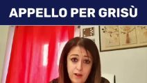 Daniela Torto (M5s) fa partire un'interrogazione parlamentare per il gatto cacciato dal treno
