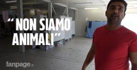 """Bologna, dentro al centro migranti sovraffollato: """"Rischio focolaio altissimo, non siamo animali"""""""