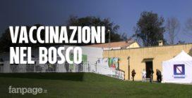 """Covid, parte il centro vaccinale nel bosco di Capodimonte, Bellenger: """"Bello, sembra la Svizzera"""""""