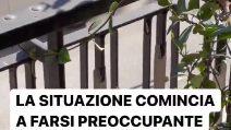 """Le fan di Sangiovanni sotto casa di Rudy Zerbi: """"Non mi danno tregua"""""""