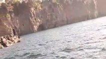 Nel Golfo di Napoli avvistata una balena grigia, sorpresa a Sorrento