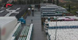 """Pomodoro da paesi extra Ue venduto come """"italiano"""": sequestrate tonnellate di pomodoro alla Petti"""