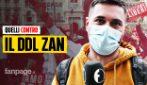 """""""L'omofobo è la vera vittima"""": cosa pensano davvero quelli contro il DDL ZAN"""