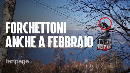 I forchettoni sulla funivia del Mottarone già a febbraio: il video esclusivo per Fanpage.it