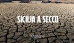 """Allarme siccità in Sicilia, la vergogna delle dighe: """"Condotte colabrodo, agricoltura senz'acqua"""""""