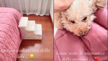 """Il dolore in casa Hunziker dopo la morte della cagnolina Lilly: """"Ci vorrà del tempo per tutti noi"""""""