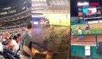 Washington, sparatoria interrompe la partita di baseball: il pubblico scappa dallo stadio