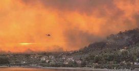 Incendi in Grecia: l'isola di Eubea devastata dalle fiamme
