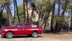 Pescara, nuovo incendio alla Pineta Dannunziana: vigili del fuoco sul posto