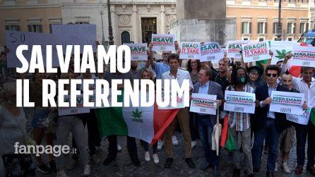 """Referendum cannabis, verso proroga in Cdm. Cappato: """"Strumento previsto da Costituzione, salviamolo"""""""