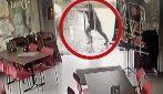 L'uomo si accorge del pericolo e scappa: la scena ripresa dalle telecamere