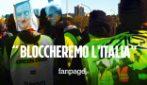 """No Green Pass, i portuali Trieste: """"Se il 30 non ritirano certificato blocchiamo tutto"""""""